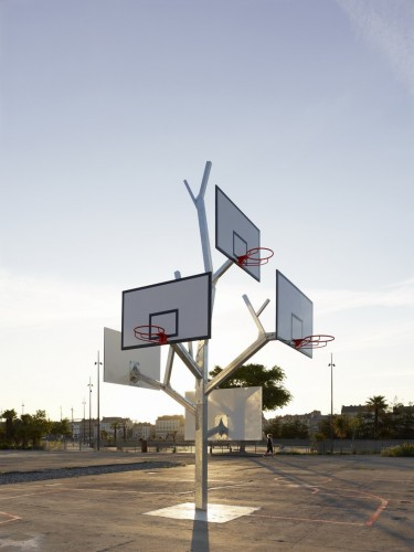 basketball tree