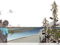 Gross Max's proposals for the ten mile boardwalk and estuary wetland park