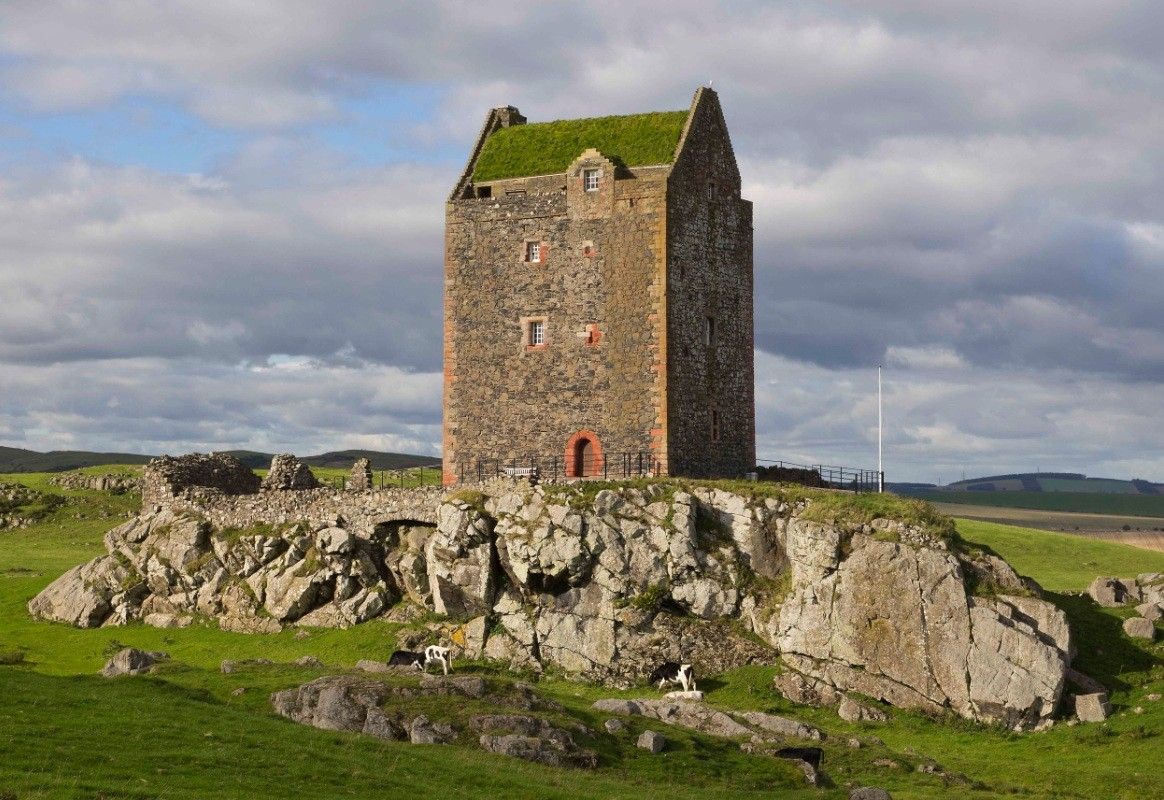 Smailholm Tower Turf Roof Unveiled April 2012 News