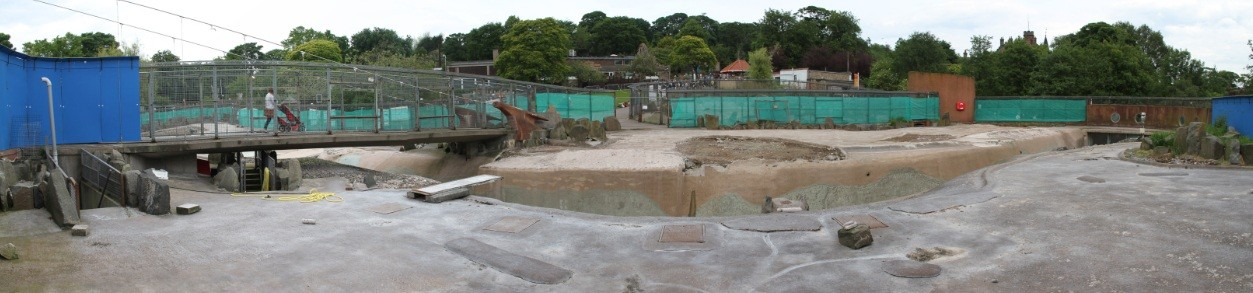 Edinburgh Zoo Launches Penguins Rock Appeal July 2012 News Architecture In Profile The