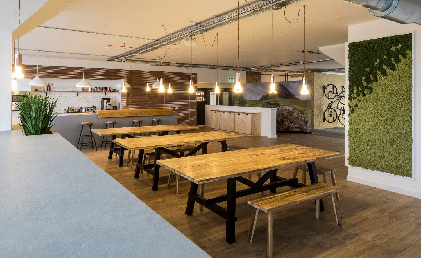 Bare Bones Office Shell Transformed Into Quirky Travel Hq February
